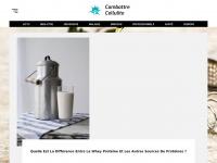 combattre-cellulite.com