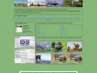 randonnee-equestre.com