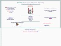 masef.com