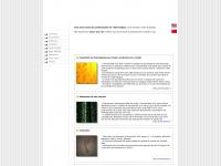 concept-web.com