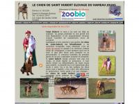 saint-hubert-bloodhound.fr