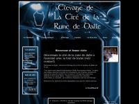 citedelarunededalle.free.fr