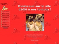 nos.border.terriers.free.fr