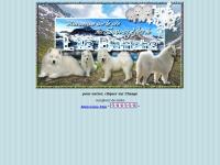 samoyede.ile.blanche.free.fr