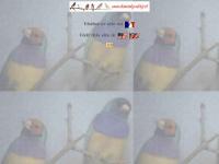 diamantgould.free.fr