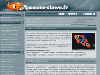 anemone-clown.fr