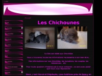 chinchillas.world.free.fr