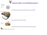 ratsweb2.free.fr