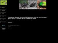 insectesdumonde.free.fr