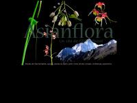 asianflora.com