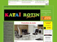 katai-rotin.com