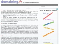 domaining.fr