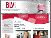 blv-consulting-group.com