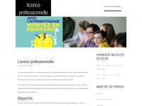 licenceprofessionnelle.com