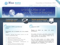 bluenote-systems.com