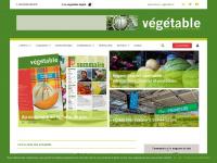 vegetable.fr
