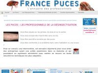 france-puces.com