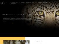 safari-tanzanie.net
