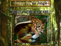survie-jungle.com