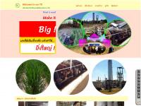 td-network.com