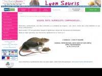 lyonsouris.com