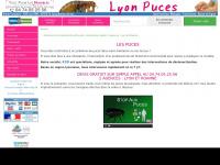 lyon-puces.com