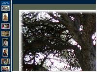 istres.aeromodel.free.fr