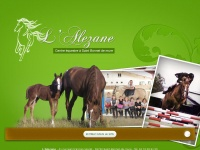 lalezane.com