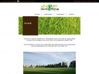 Jardinier paysagiste chlorophylle for Entretien jardin narbonne