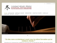 acupuncture-beloeil.com