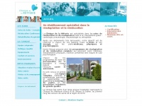 clinique-mitterie.com