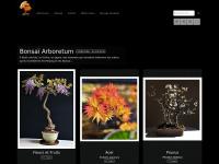 bonsaiarboretum.fr