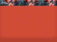 custom-design.ch