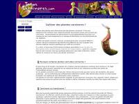 infoscarnivores.com