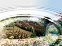 valed.free.fr