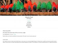 sebastien.baud.free.fr