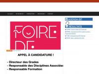 taekwondo-idf.com