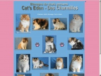 chatons-persans.fr