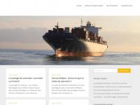 importgrossiste.com
