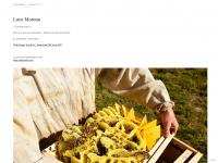 lucemoreau.com