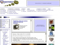 geminterest.com
