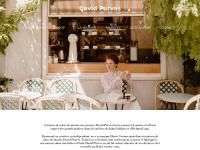 davidpurves.com