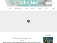 sethetlise.com