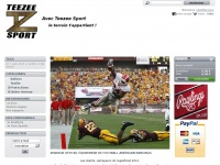 teezeesport.com