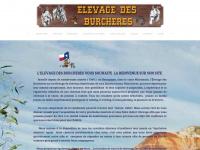 elevagedesburcheres.com