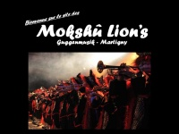 mlions.ch