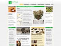 info-genealogie.com