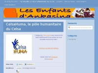 Celsahuma.wordpress.com