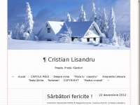 lisandrulisandru.wordpress.com
