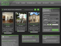 taulier-immobilier.fr